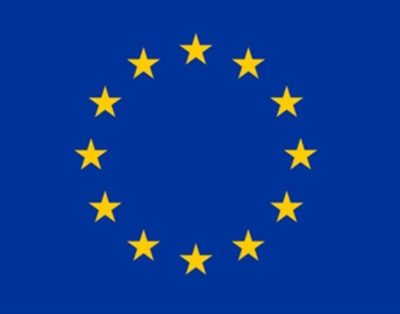 Service volontaire européen (SVE)